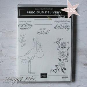146465_Precious_Delivery_Set